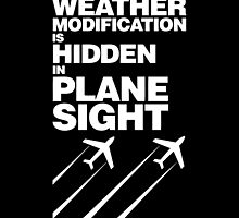 Weather Modification, Hidden in Plane Sight by fearandclothing