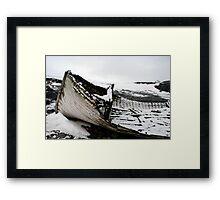 Antarctic Allegory Framed Print