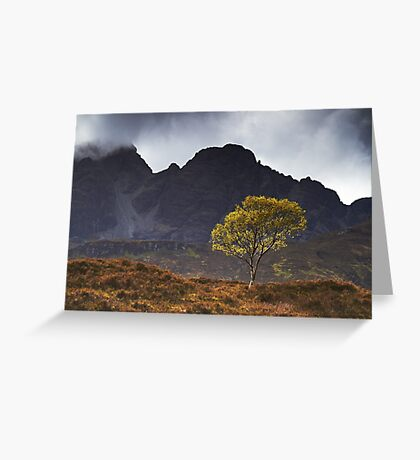 The Wee Tree Greeting Card