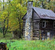 Little Cabin in the Woods... by Linda Costello Hinchey