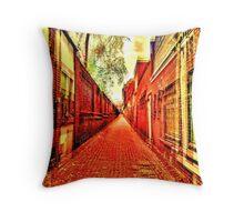 the secret lives of alleys. Throw Pillow