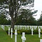 Cimetière américain de Normandie by ohsotorix3