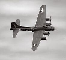 """B-17G """"Thunderbird"""" by Paul Thompson"""