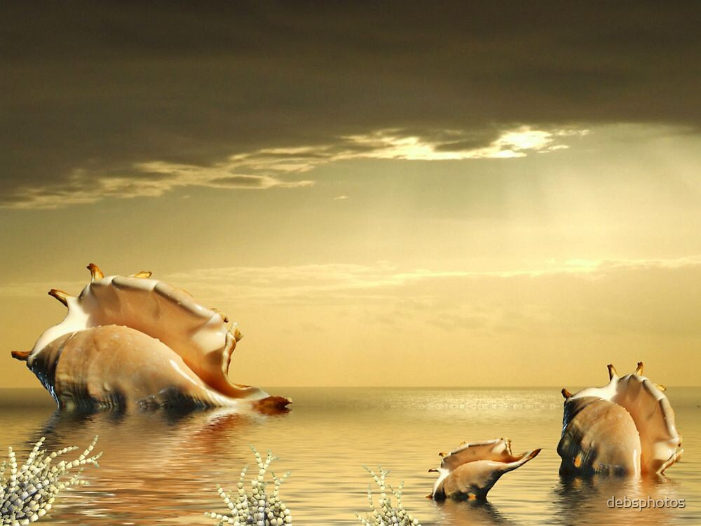 """Low Tide"" by debsphotos"