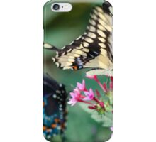 Giant Swallowtail Papilio Cresphontes iPhone Case/Skin
