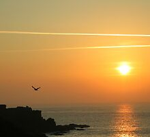 lizard point at sunrise by Simon Jewell
