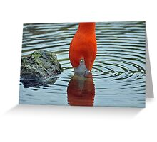 Two in One Flamingo Greeting Card