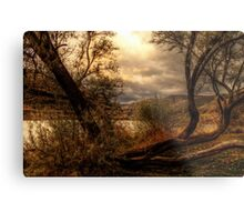 Sneak a Peek at the Snake River  Metal Print