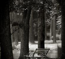 A Quiet Place - South Carolina by Kent DuFault