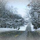Oh No More Snow by Linda Miller Gesualdo
