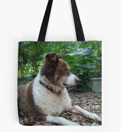 This is Buddy...who came to stay Tote Bag