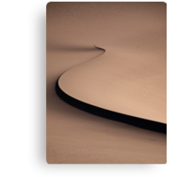 Desert spiral Canvas Print
