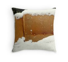 It's Cold Outside! Throw Pillow