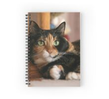 My parents kitty Spiral Notebook