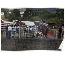 I'm After you. Tasmania Rodeo Woodstock 2009 Poster
