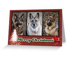Nimmo, Rixa & Hero Christmas Card Greeting Card