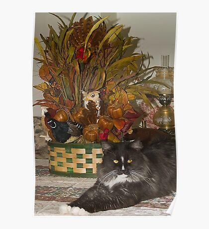 Pyewacket Enjoyed Thanksgiving Poster