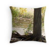 Roots ~ Tree from Ogden River Parkway Throw Pillow