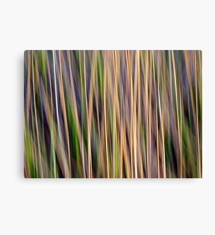 Grasslands Canvas Print
