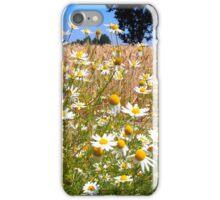 Daises on Sauvie Island iPhone Case/Skin