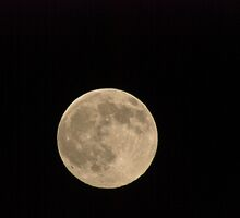 December Moon Over Missoula by Bryan D. Spellman