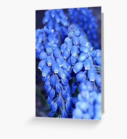 Blue Horizons Greeting Card