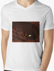The Enlighted Cave Mens V-Neck T-Shirt