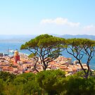 Postcard from Saint Tropez, Southern France by Bruno Beach