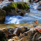 Silken Stream by Anthony  Romano
