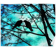 The Courtship of Crows Poster
