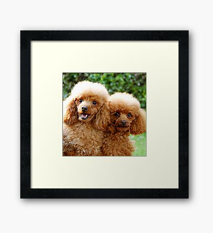Jack and Toffee Framed Print