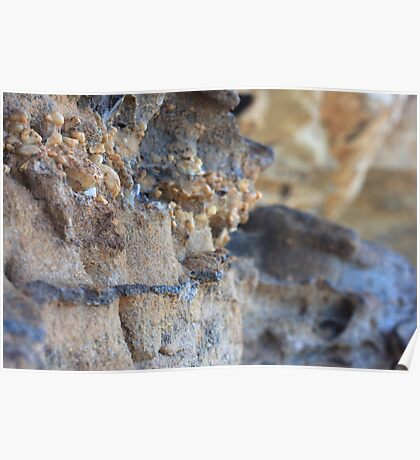 Layers in Wind Weathered Rockface Poster