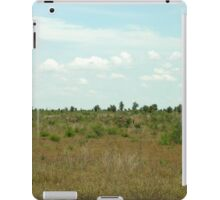 a stunning South Africa landscape iPad Case/Skin
