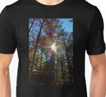 Sun Shining Through the Autumn Trees Unisex T-Shirt