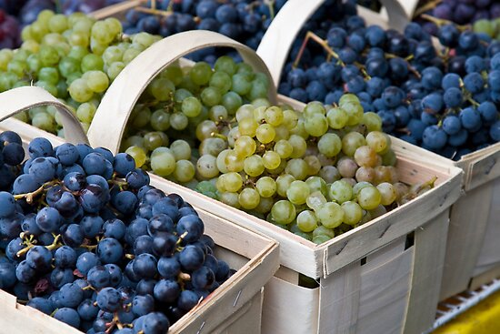 Basket of Grapes by Brooke Findlay