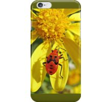 Red Bug on Yellow Daisy iPhone Case/Skin