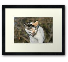 Angry Buffy Framed Print