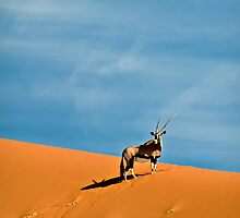 Oryx on the skyline | Namibia by Olwen Evans