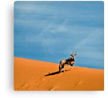 Oryx on the skyline | Namibia Canvas Print