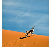 Oryx on the skyline | Namibia Photographic Print