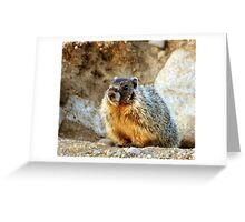 marmot pup II Greeting Card
