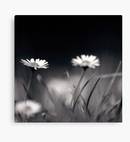its quiet down here... Canvas Print