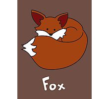 F for Fox Photographic Print