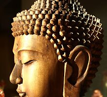 Aspects of Buddha 1 by psft001
