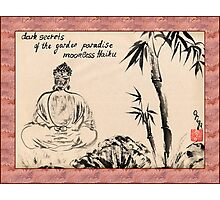 Dark Secrets (garden Buddha). Haiga Photographic Print