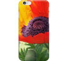 First Poppy of the Season in Mo's Garden 4 iPhone Case/Skin