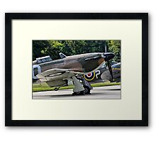 Ready To Scramble Framed Print