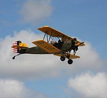 Waving Good Bye by Pilotgear
