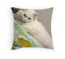 Sugar and his friends Throw Pillow