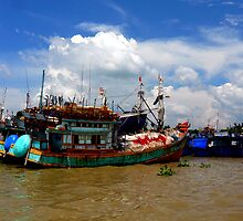 Mekong Delta, Vietnam by Tamara Travers